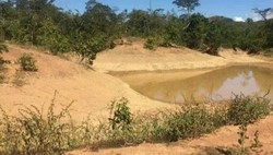 Rural à venda BURITIS   Fazenda Buritis MG, à venda, 200 KM de Brasília