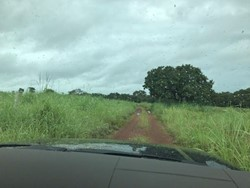 Rural à venda PARAISO DO TOCANTINS