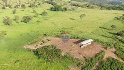 Rural à venda COCALZINHO DE GOIAS   Fazenda para agropecuária 119,7 ha - Cocalzinho de Goiás -GO