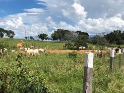 Rural à venda BURITIS   Aceita imóvel em Brasília