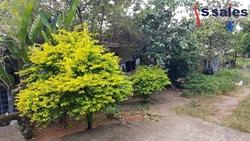 Casa à venda COLONIA AGRICOLA SAMAMBAIA