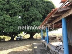 Rural à venda ANANAS   Gleba Cajueiro - Fazenda Santo Antônio