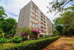 Apartamento para alugar SQS 309 Bloco F   apartamento para alugar asa sul