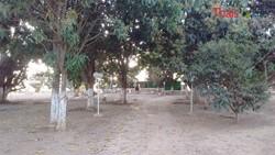 Rural à venda Ponte Alta de Cima   DF 290 - Ponte Alta - Gama