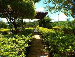 RODOVIA DF-0001 KM 03 Jardim Botanico Brasília   JARDIM BOTANICO - BELA CHACARA