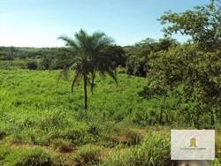 Rural à venda CORRENTINA   Fazenda riquíssima em água - Correntina / BA